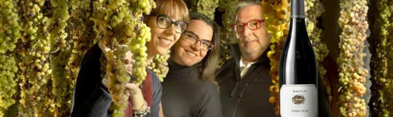 Maculan-Pinot-Nero-2018-stories